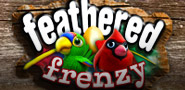 Feathered_frenzy