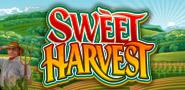 Sweet_harvest
